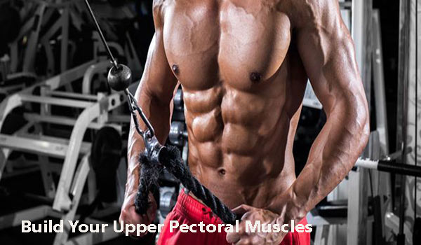 Chest Workout – Build Your Upper Pectoral Muscles